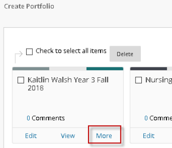"My Portfolio window displaying the ""more"" button"